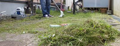 草刈り・芝刈り・草むしり