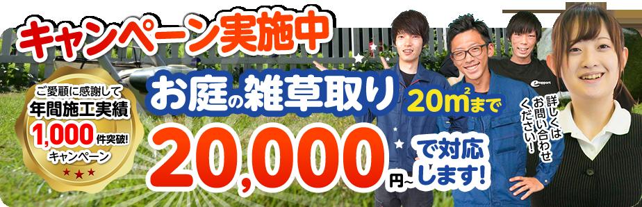 キャンペーンお庭の雑草取り20㎡まで20,000円~対応